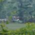 http://www.advakarni.com/Assets/Images/4/26/Small/929_sirha_bagm.jpg